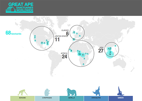 Great-Apes-Visualization